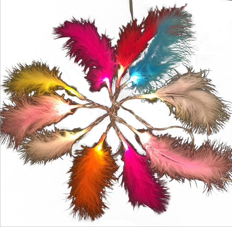 Colorful battery powered feather led fairy lights